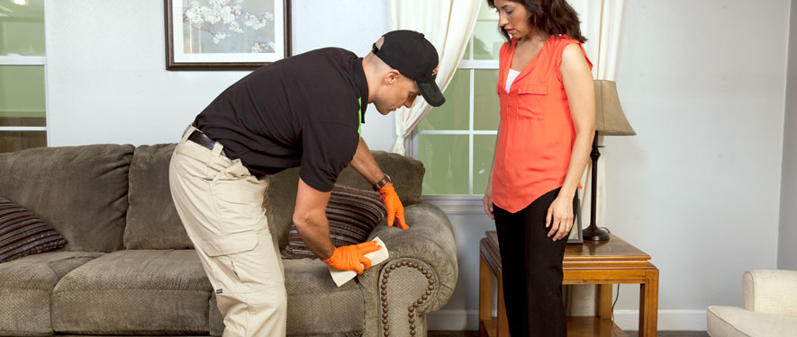 Mequon, WI carpet upholstery cleaning