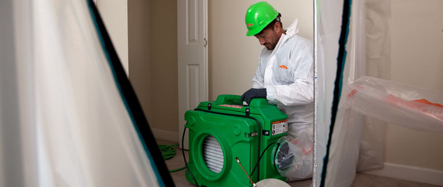 Mequon, WI mold cleanup