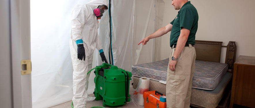 Mequon, WI mold removal process